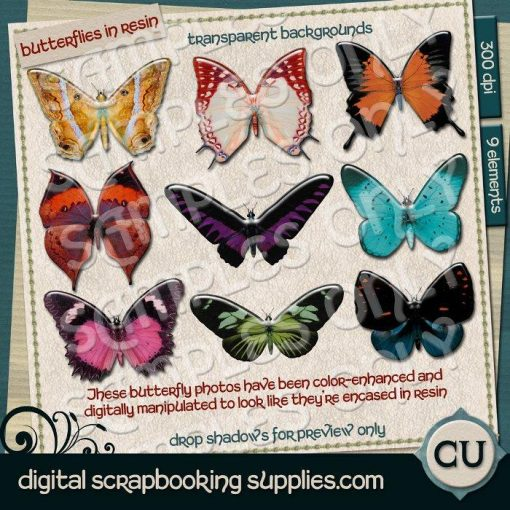 digital butterfly images