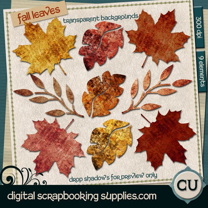 dss-cu-fall-leaves-700