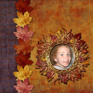 dss-fall-leaves-qp-sample